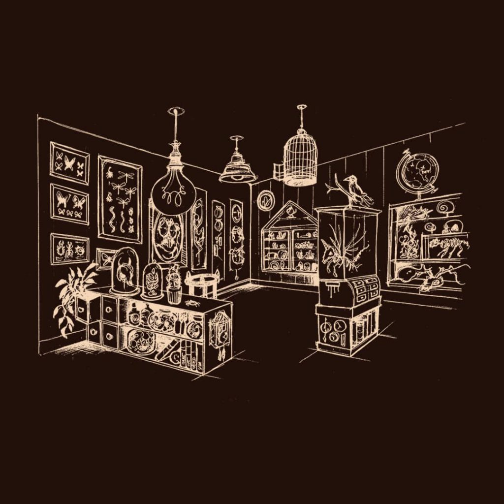 Illustration steampunk d'un cabinet de curiosité